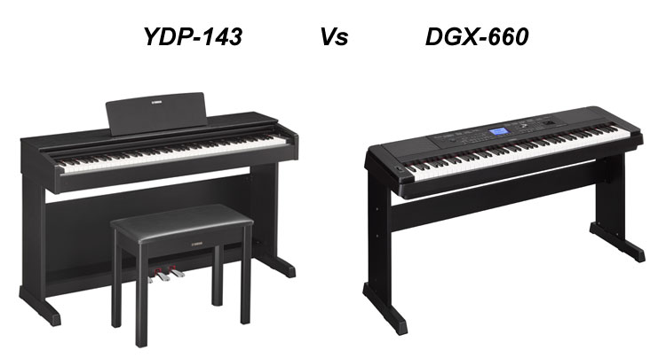 YDP-143 vs DGX-660