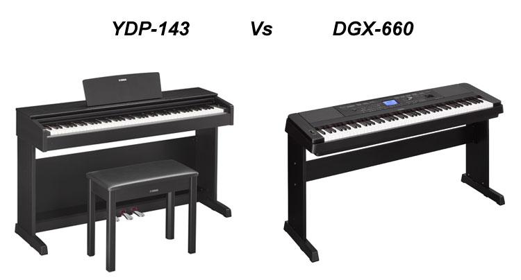 YDP-143 vs DGX-660